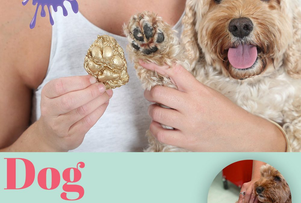 Dog Prints – Keep Your Puppy's Paw Forever!