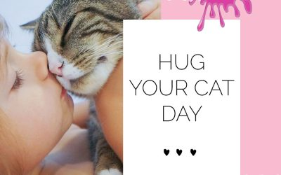 Hug Your Cat Day at Paint a Pot